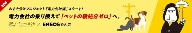 """""""おうち""""をなくしたペットたちの保護活動をみんなでサポート!おすそ分けプロジェクト!"""